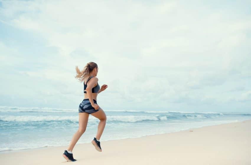 Circuit training / renforcement musculaire